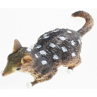 Science & Nature - Quoll