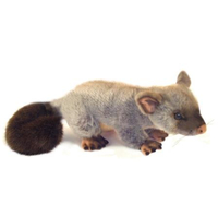 Bocchetta - Zack Possum Plush Toy 30cm