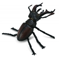 Collecta - Stag Beetle 88703