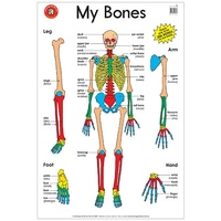 Learning Can Be Fun - My Bones Poster