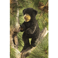 Folkmanis - Black Bear Cub Puppet
