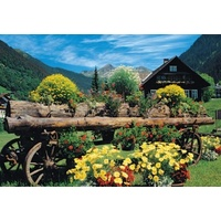 Jumbo - Alpine Flowers Puzzle 1000pc