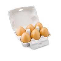 New Classic Toys - Eggs in Carton