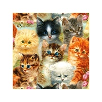 Sunsout - A Pile Of Kittens Puzzle 1000pce