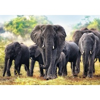 Trefl - African Elephants Puzzle 1000pc